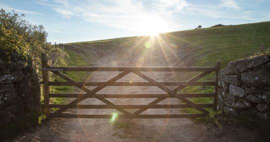 Reflexión Bíblica: La Puerta