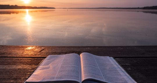 buen-pastor-post-misiones-aqui-alla.jpg
