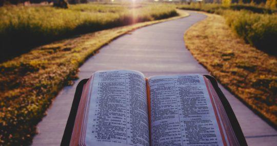 buen-pastor-reflexiones-sanas-palabras